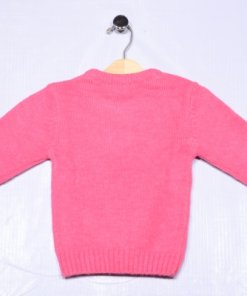 Pink Coloured Pullover by Gini & Jony